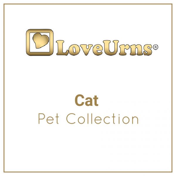 Cat Collections